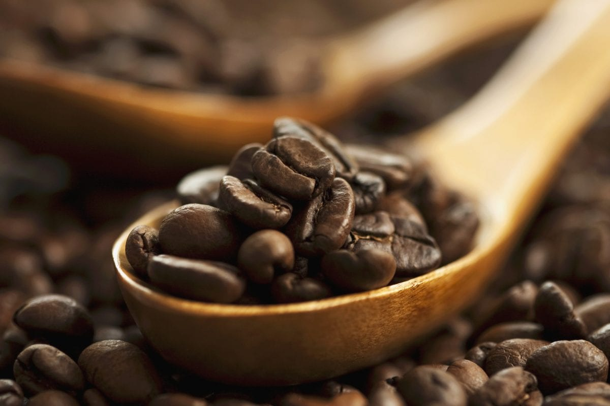 Coffee, from plant to cup 100% Made In Italy