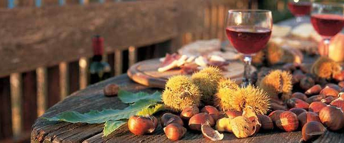 New wine and festivals for the November's summer