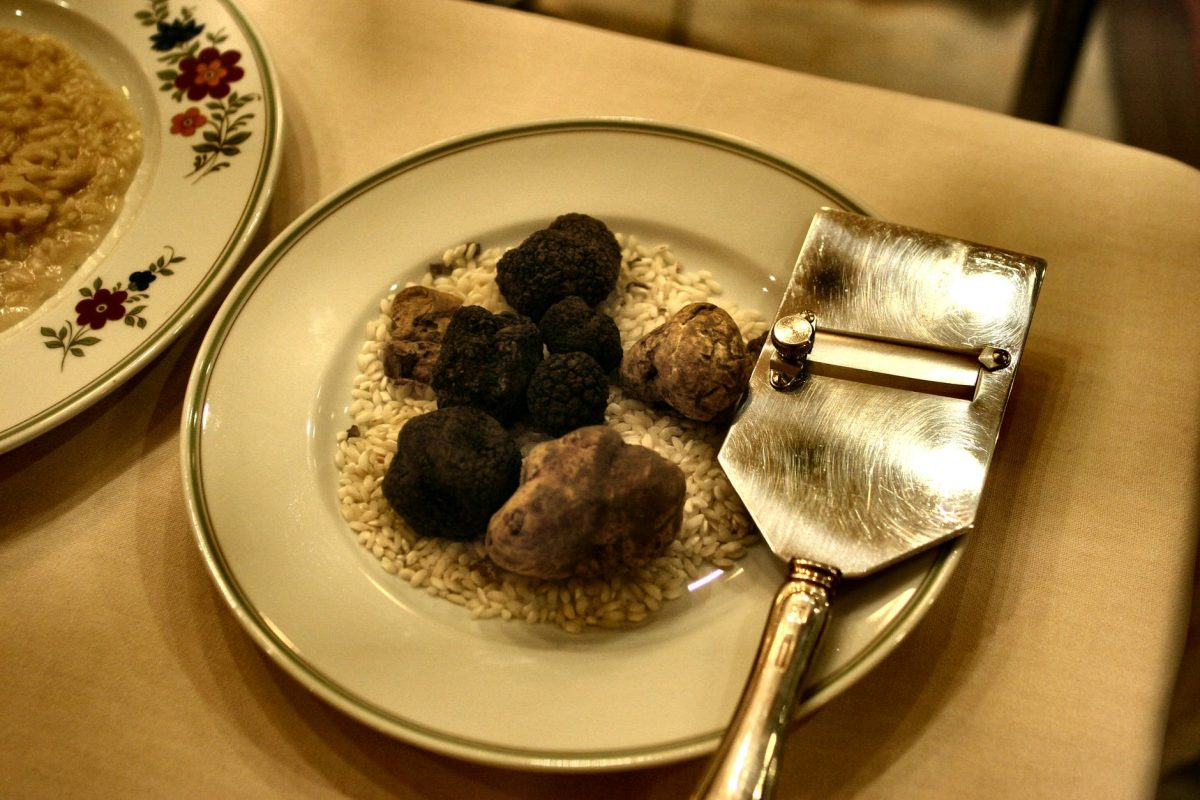 The Italian capitals of truffles