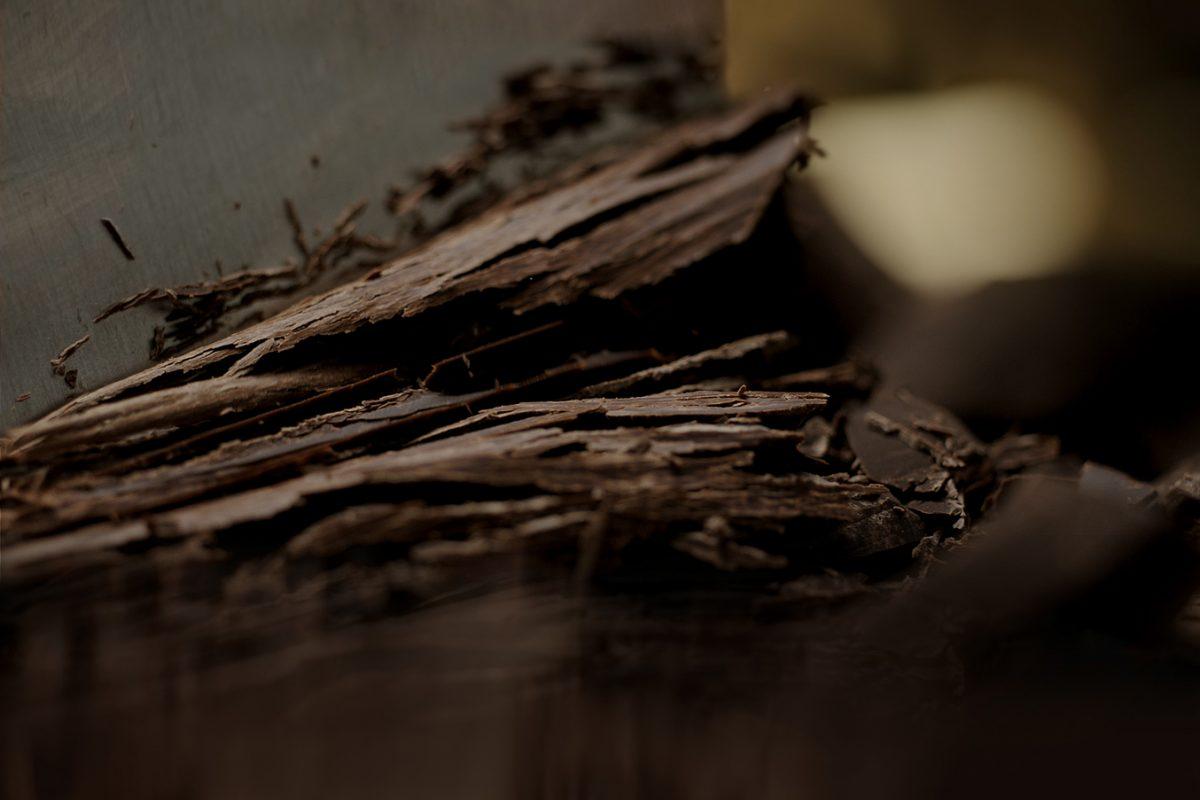A chocolate winter